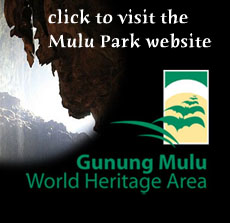 visit Mulu National Park